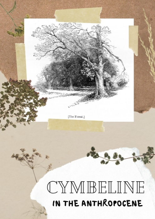 Cymbel(z)ine in the Anthropocene