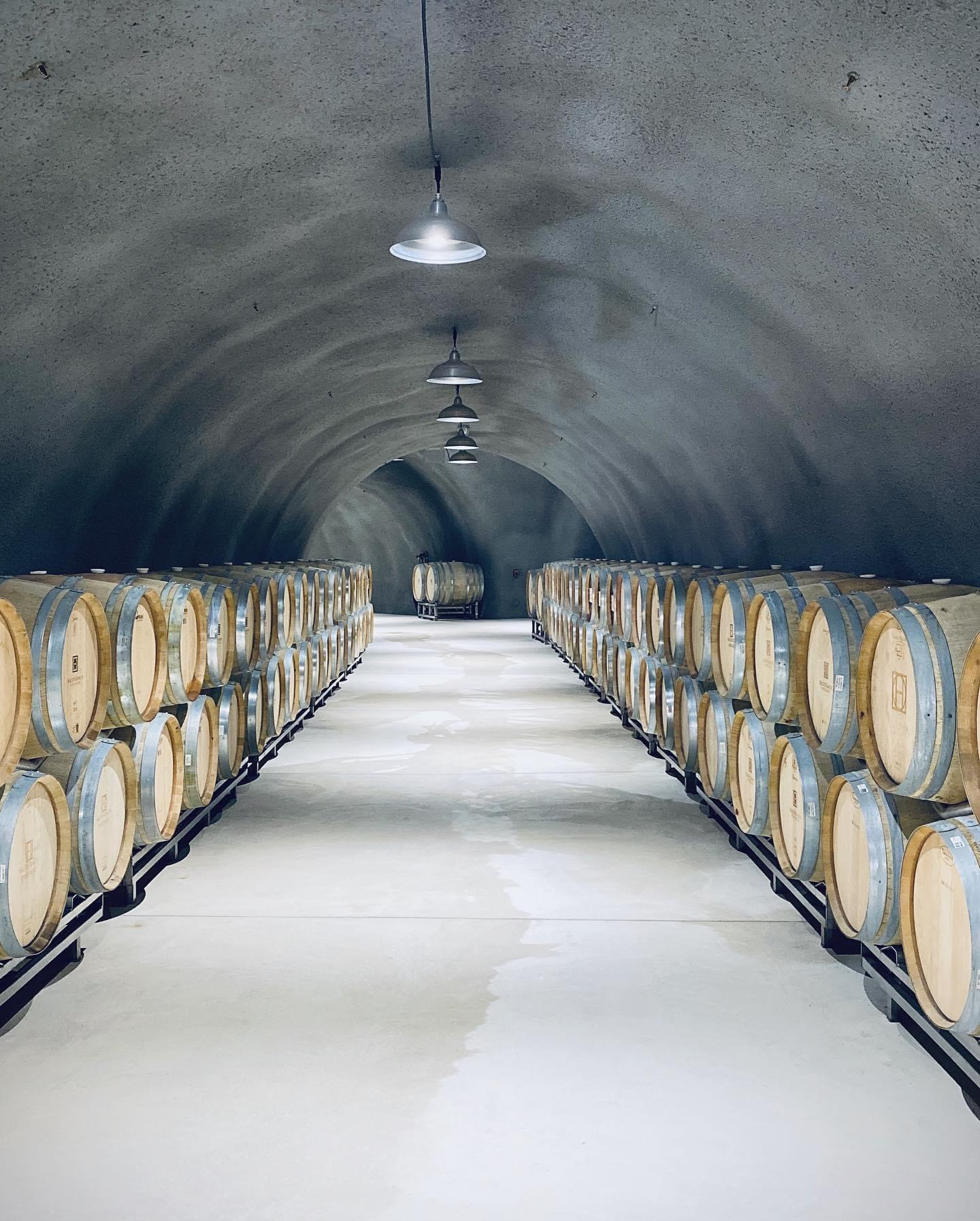 Estate Wine Tours Next Adventure 805 Santa Barbara-29