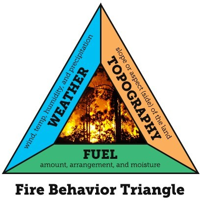 Wildfire Predictive Services
