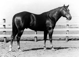 King Ranch Kingsville-4
