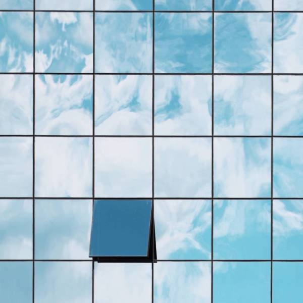 Bluebird Services-1