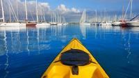 Harbor Kayak Tour