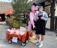 Winners announced for 11th annual Solvang Scarecrow Fest