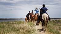 Beach Horseback Riding Tours