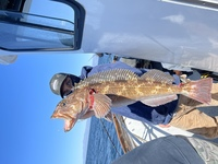 Stardust 3/4 day Rockfish Opening day 3.1.21