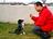 Dsc_0181_carlos_training_black_dog_paw_1_