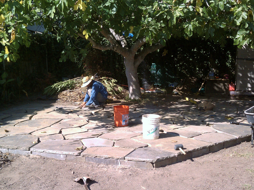 Installing Raised Flagstone Dry Sand Laid Patio Around Large Fruit Tree