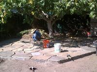 Installing Raised Flagstone Dry Sand Laid Patio Around Large Fruit Tree