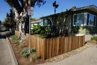 Frontyard New Fence Plantings Cobblestone