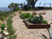 raised veggie boxes planters drought tolerant firescaping fire rebuild