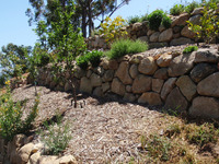 stone terrace walls fruit trees planting