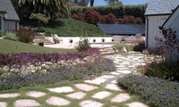 landscape management plants lawn irrigation hardscape