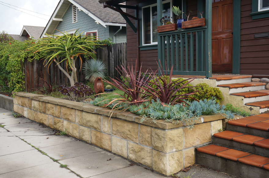drought tolerant succulent garden_Donze