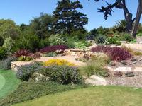 drought tolerant succulent plantings stone terraces