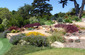 drought tolerant succulent plantings stone terraces