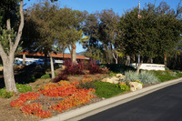 Firefighter Memorial Living Flame plantings