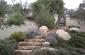 Mediterranean plantings_Amy&E