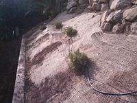 slope stabilization erosion blanket plantings