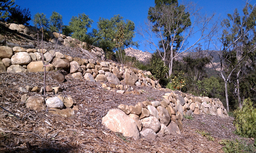 steep slope sandstone terrace stabilize post fire rebuild