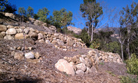 steep slope sandstone terrace stabilize post fire rebuild