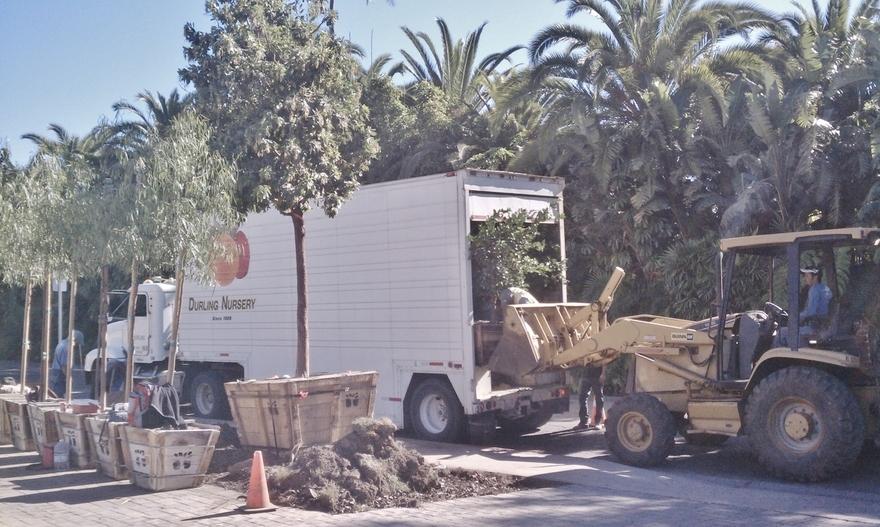 unloading box trees