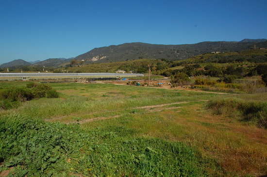 10 ACRE AGRICULTURE Property. SOLD