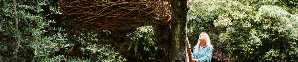 Tree House | Santa Barbara