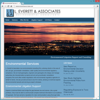 Professional Service Website Template - Everett & Associates