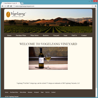 Professional Service Website Template - Vogelzang Vineyard