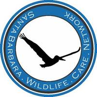 Santa Barbara Wildlife Care Network