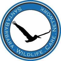 Santa Barbara Wildlife Care Network
