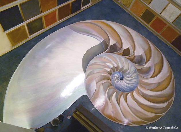 Trompe Nautilus floor mural 1