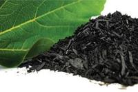 Biochar and carbon sequestration