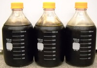 Biochard Fuel from Bio-Waste �Nasty to Nice� Part I
