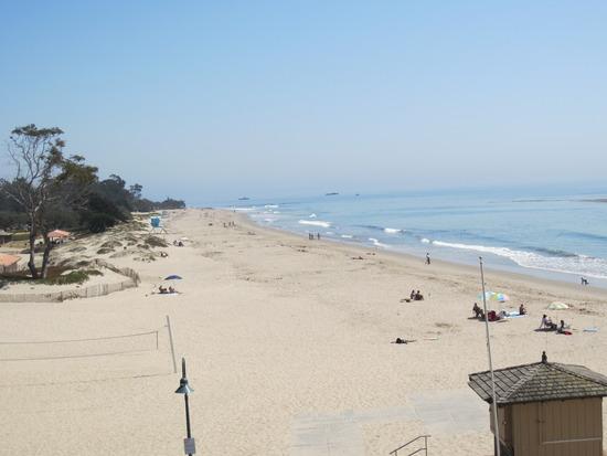 Beach View Condo #301