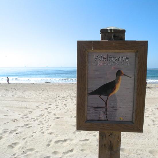 Carp Beach Sign