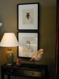 Framed Art Accessories