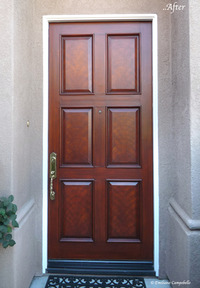 Faux mahogany door 1