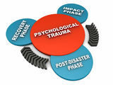 An individual Therapeutic approach to each PTSD client is the most effective