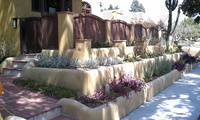 Succulent Garden Terraces
