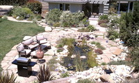 Stepping Stones through Pond