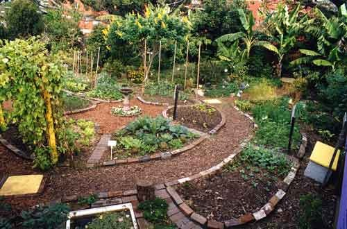 TOCO Launches a new program - TOCO PERMACULTURE