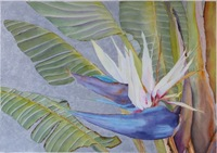 Bright Birds Watercolor 20x14