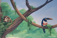 Rainforest Pediatricians Mural  936
