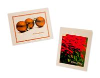Center for Spiritual Living Palm Desert Holiday Cards