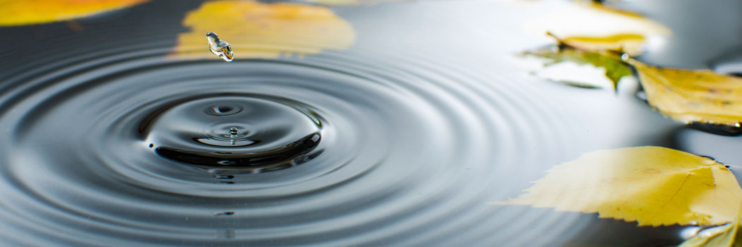 Love is a Ripple Effect