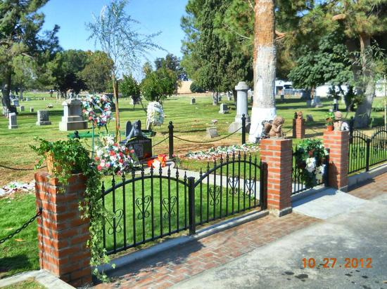 Garden of Innocence/Fresno-2