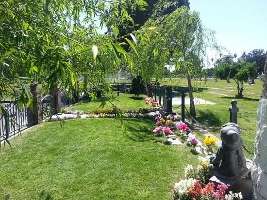 Garden of Innocence/Fresno-10