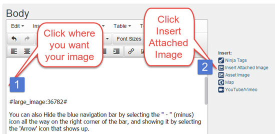 Add Images to Blog Posts