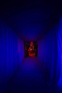 Custom Fabric Tunnel